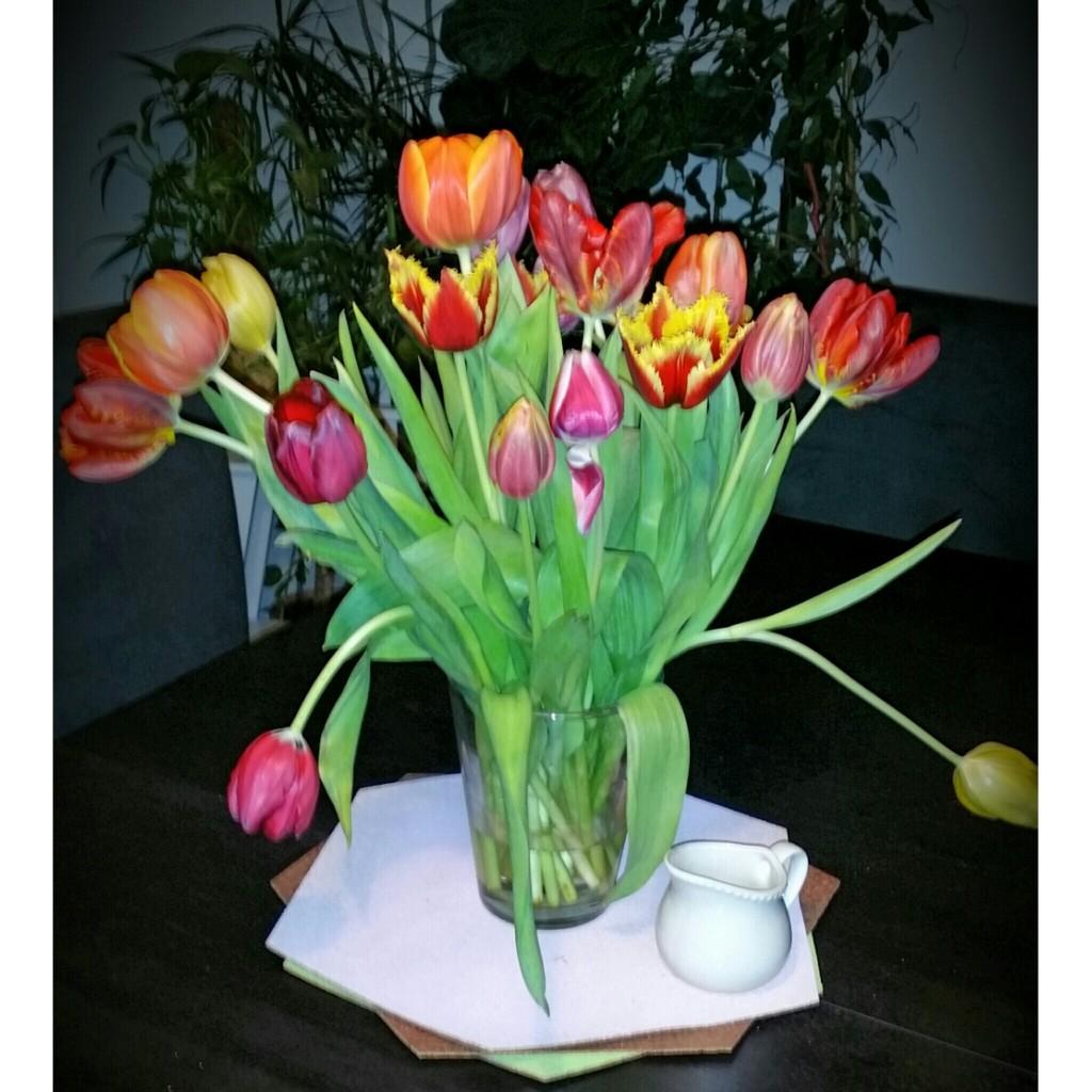Tulpenstrauß bunt